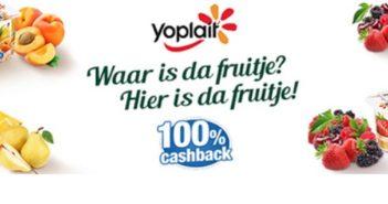 Panier de Yoplait yoghurt 100% terugbetaald