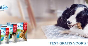 Test gratis de Purina DentaLife sticks voor honden dankzij Dogofriends
