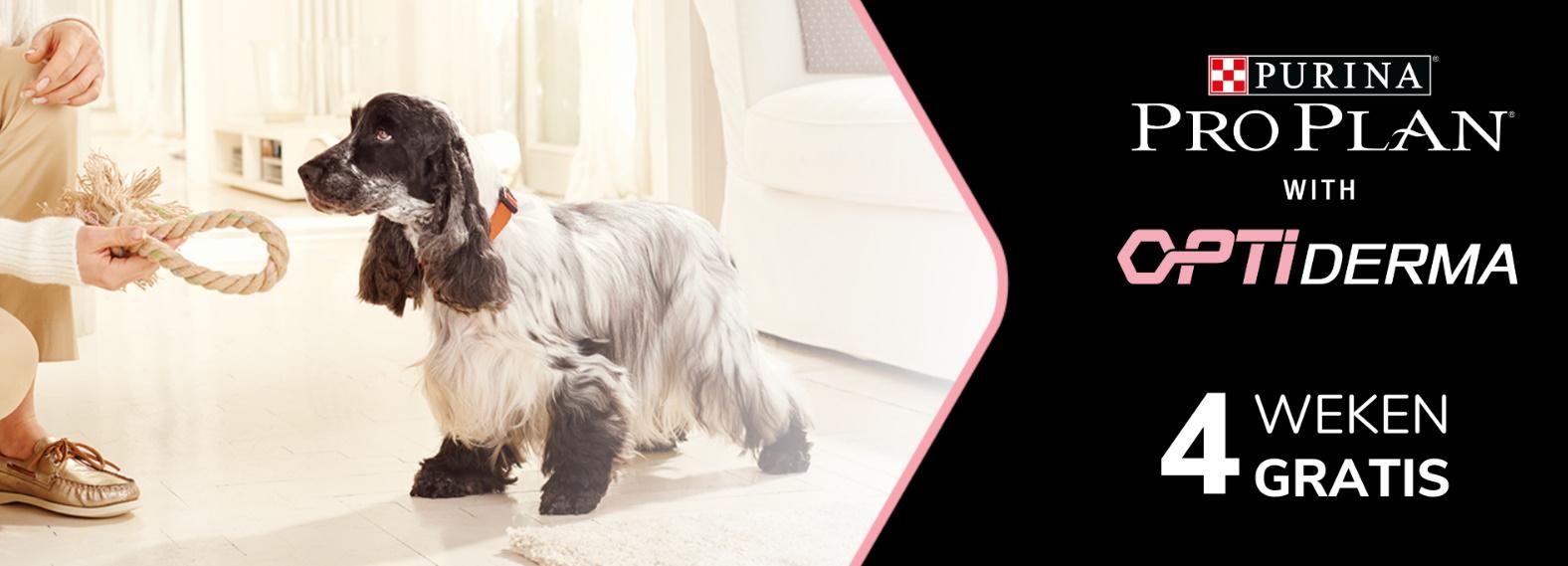 Test gratis Purina Pro Plan Optiderma hondenvoeding met Dogofriends