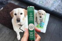 Gratis BuddyBites hondenkoekjes