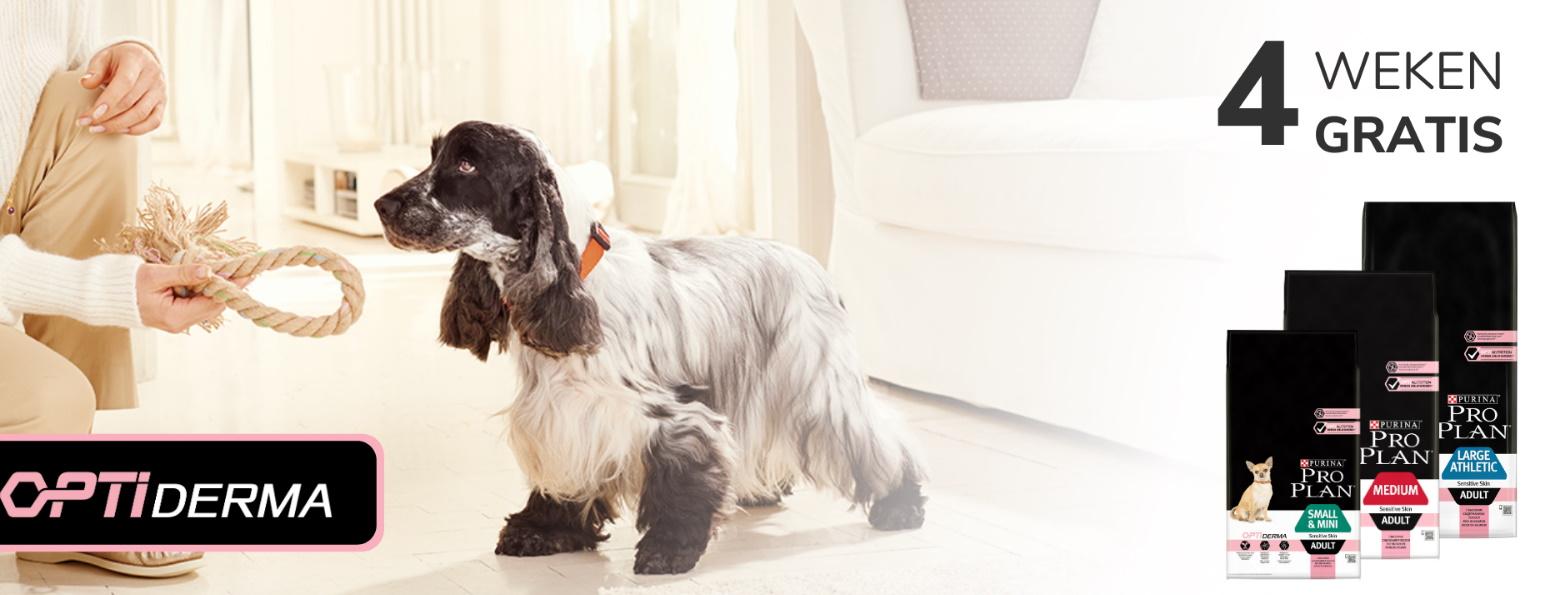 Test gratis de Purina ProPlan hondenvoeding