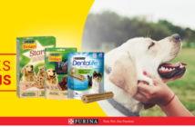 Gratis snacks voor honden