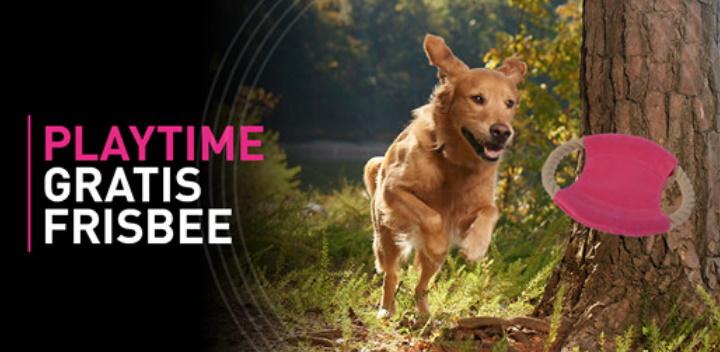 Gratis frisbee voor honden