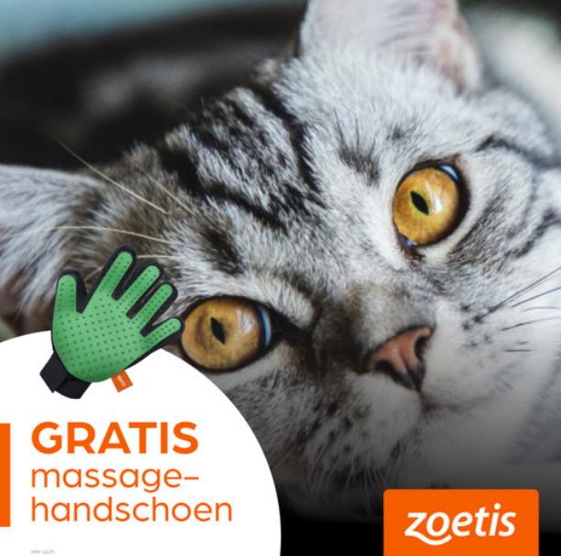 Gratis borstelhandschoen voor je kat